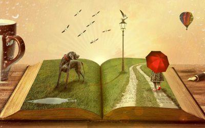 Agence Régionale du Livre PACA – Article de blog