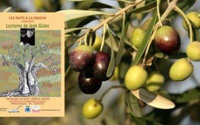 Jean Giono : Poème de l'olive